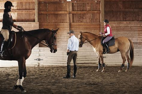 horse strong horses thomas controlling control standing stable