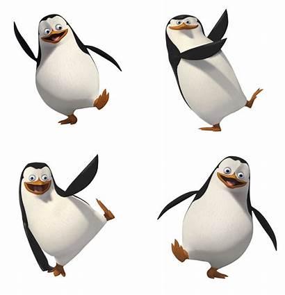 Madagascar Penguins Penguin Clipart Transparent Cartoon Clip