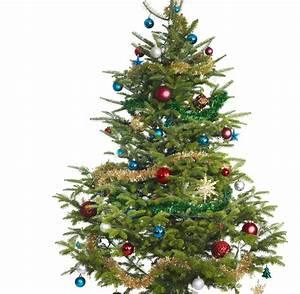 Weihnachtsbaum Komplett Geschmückt : weihnachtsbaum bilder bilder19 ~ Markanthonyermac.com Haus und Dekorationen