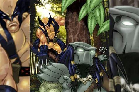 Wolverine vs. Predator | Wolverine marvel art, Wolverine ...