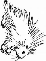 Porcupine Coloring Printable Animals Clipart Animal Sheet Sheets Clip Sketch Template Cliparts Library Town sketch template