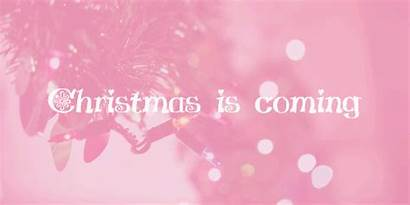 Christmas Coming Pink Almost Lights Lovethispic Excited