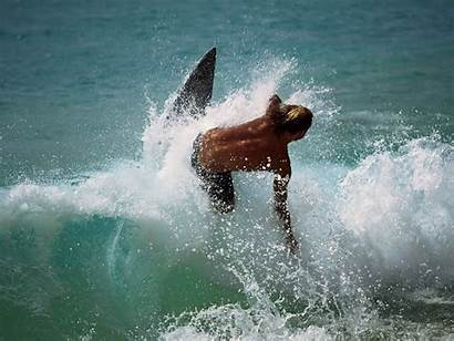Water Surfing Sports Wallpapers