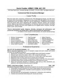 resume format for senior account executive public relations banking resume templates