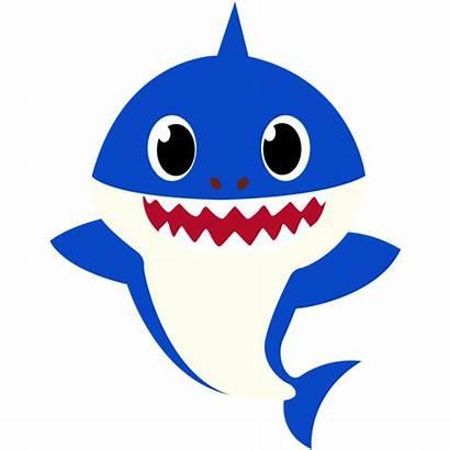 Shark Totem Brilhante Lojas