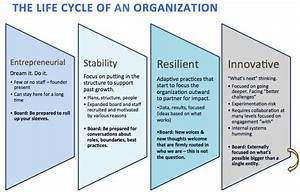 Reading Your Palm  Organizational Life Cycle And The Future Of Your Decisions