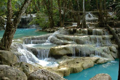 Western Forest Complex Thailand The Wildlife Diaries