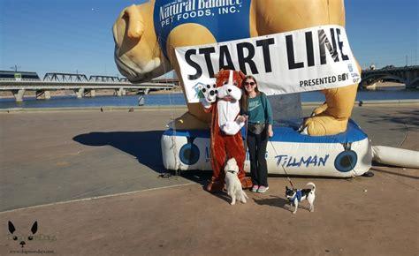 aawl walk  save animals dog mom days