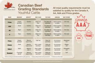 Canadian Beef Grading