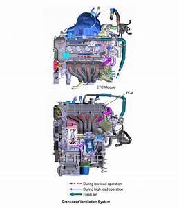 Kia Niro   Schematic Diagrams   Crankcase Emission Control