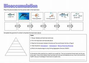 Bioaccumulation Ppt And Booklet And Case Study Article By
