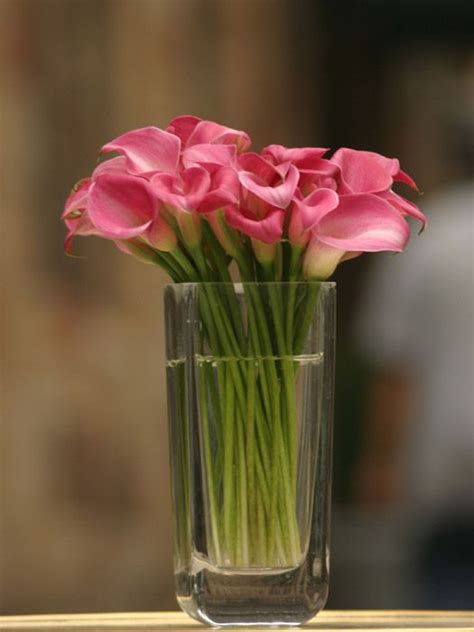Floral Arrangements Pink Flowers
