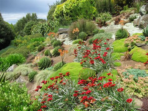 hillside gardening hillside garden gardens pinterest