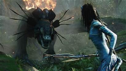 Avatar 1080p Wallpapers Google