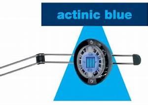 Eheim Power Led Erfahrungen : eheim 6471222 powerled marine actinic blue negozio acquari ~ Eleganceandgraceweddings.com Haus und Dekorationen