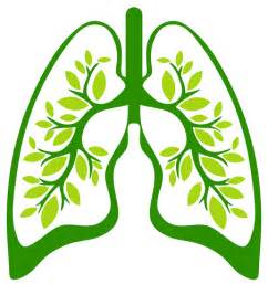 Improve Lung Health