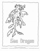 Coloring Leafy Seadragon Sea Seepferdchen Template Cheapest Dragon Code Ausmalbilder Secret Ocean Clipart Cake Birthday Echo Colorful Designlooter Library Clip sketch template