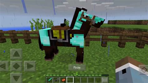 minecraft pe  update   horse info youll