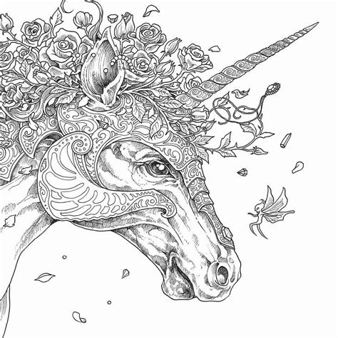 unicorn coloring pages  adults  coloring pages  kids