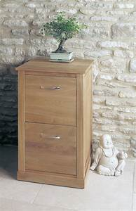 Mobel Oak Two Drawer Filing Cabinet Was 36000 Now 296