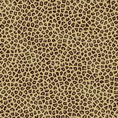 Cheetah Wallpapers Backgrounds Desktop Background Fabric Bee