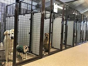 indoor outdoor boarding suites kingsmark kennels in With cheap indoor dog kennels