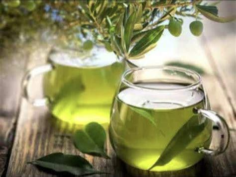 Çaj me gjethe ulliri, sjell përfitime të shumta në shëndet ...