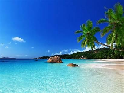 Tropical Paradise Beach Ocean Sea Summer Palm