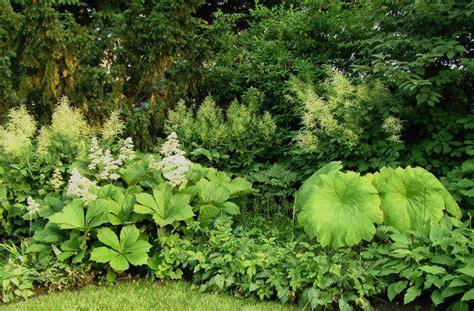 staudengarten gross potrems gartenrundgang im juli