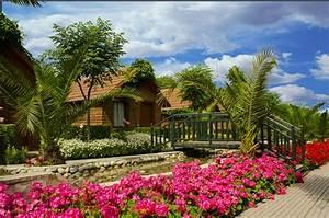 standard zimmer can garden beach hotel With katzennetz balkon mit can garden resort side homepage