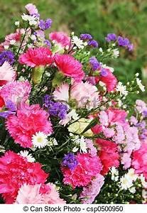 Beau Bouquet De Fleur : beau bouquet fleurs beau bouquet roses fleurs purples ~ Dallasstarsshop.com Idées de Décoration