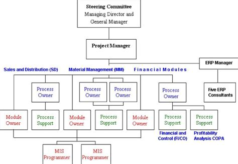 project team structure  functional module