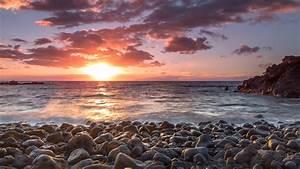 Free, Photo, Beautiful, Seascape, -, Wildlife, Sea, White, -, Free, Download