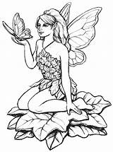 Fairy Coloring Pages Adults sketch template