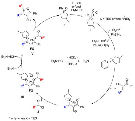 synthesis  functionalized furans  chemoselective