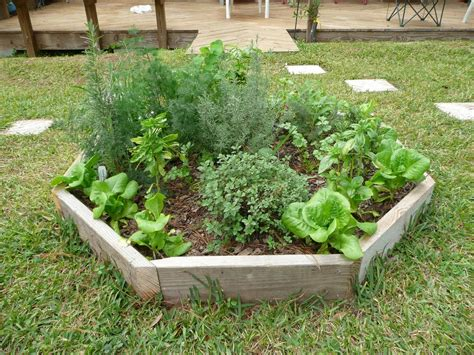 Outdoor Herb Garden Design Herb Garden Ideas Xtend