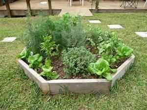 Best, 20, Herb, Garden, Design, 2017