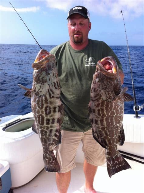 black grouper fishing   florida keys