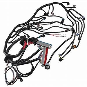 Top 10 Ls Swap Harness  U2013 Automotive Replacement Electrical
