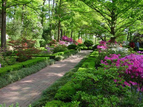 best homepage design washington dc 39 s best kept secret the national arboretum