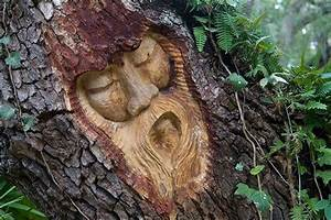 Keith jennings tree spirit carvings 7 faces in trees etc for Tree spirit carvings by keith jennings