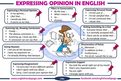 Useful words and phrases for essays