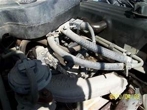 1987 Dodge Dakota Vacuum Hoses  Engine Performance Problem