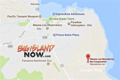 Macadamia Nut Plant Fire Causes $105,000 in Damages | Big ...