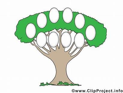 Stammbaum Erstellen Vorlage Ausdrucken Zum Kostenlos Familienstammbaum