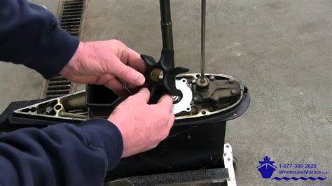 replace  water pump   johnson evinrude