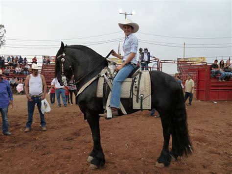 horses mexican dancing mexico rachael wheeler matthew award george