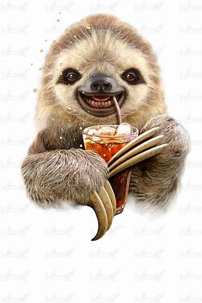 Sloth Soft Drink Lawless Adam Shirts Designed