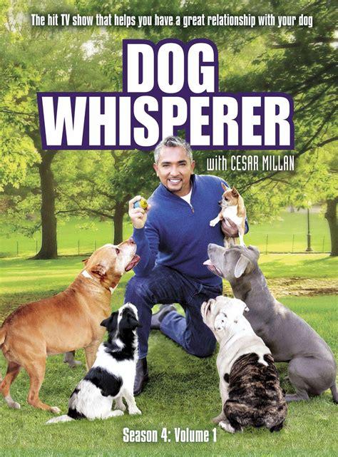 opinions  dog whisperer  cesar millan
