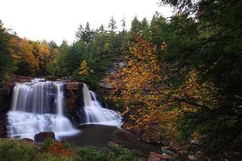 west virginia fall foliage  peak  train rides